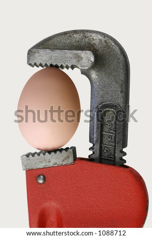 Pipe Wrench with egg