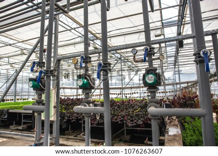 Pipes of automatic irrigation or watering system in modern hydroponic greenhouse, industrial cultivating and growing plants #1076263607