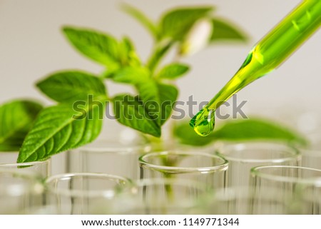 pipette over test tube dropping sample chemical into sample herbal plaint , biotechnoloy research concept.