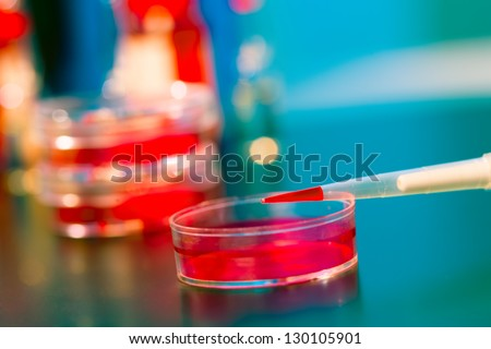 Pipette with red liquid and petri dishes