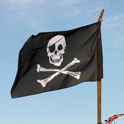 Pirate flag fluttering in the breeze