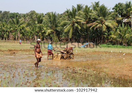 PIRAVOM, INDIA - FEB 29 : Unidentified farmers work in the paddy field using tiller tractor to plow the soil before the rainy season on February 29, 2012 in Piravom,Kerala, India.