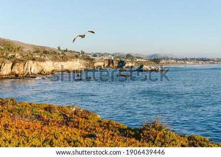 Pismo Beach cliffs and ocean view. Pismo Beach, a vintage coastal city in San Luis Obispo County, Zdjęcia stock ©