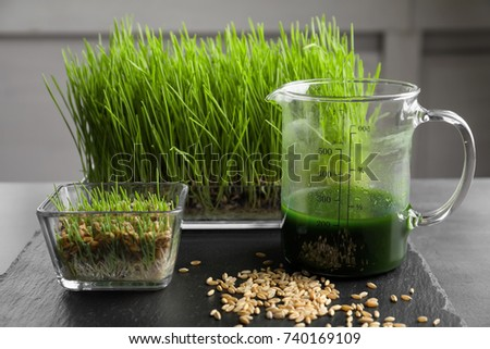 Pitcher with healthy wheat grass juice on slate plate #740169109