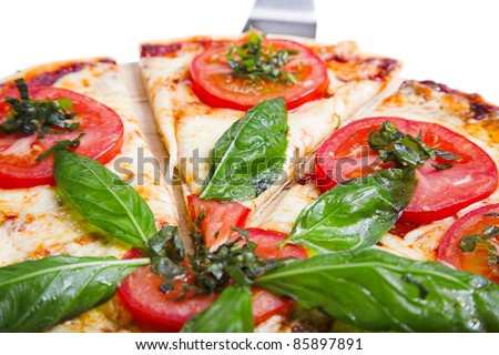 pizza margarita isolated on the white background