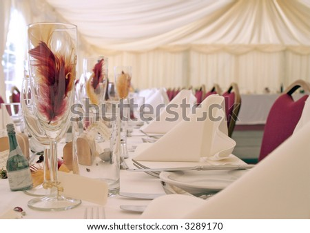 Place setting at wedding reception 2