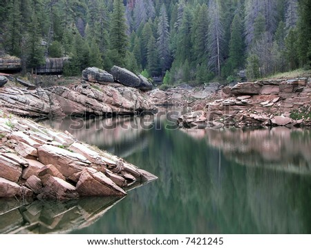placid pine reflections on blue ridge reservoir - northern az