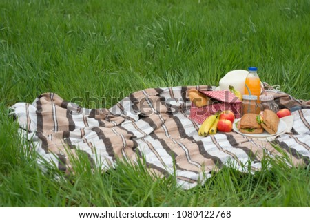 Plaid, hat, glasses, book, senvichi, juice and fruit with a basket on a plaid on the green grass. The concept of a picnic, summer and rest.