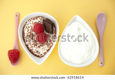 Plain Greek Yogurt with Raspberries and Flakes of Chocolate