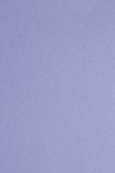 Plain purple paper texture