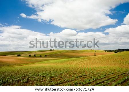 Plains of Alentejo, Portugal