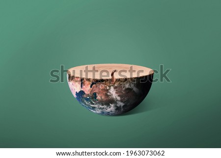 Planet earth and felled tree with rings, concept. Preserving the environment and cutting down trees. Creative wood stump and earth. Ecosystem and ecology  Stock photo ©