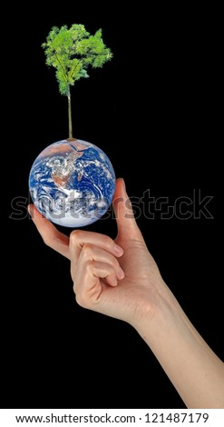 Planet earth as symbol of nature conservation.Elemen ts of this image furnished by NASA - stock photo