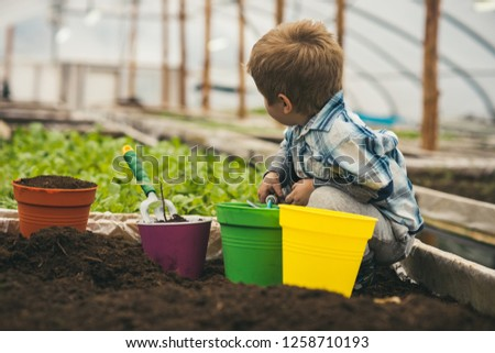 planet protection. planet protection by growing flowers. small boy fight for planet protection. planet protection of small kid in greenhouse. small gardener