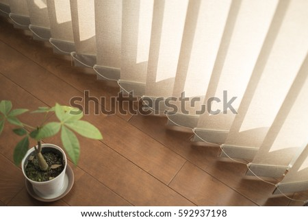 plant and blinds #592937198