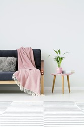 Plant and books on wooden stool next to sofa with pink blanket in cozy living room interior with carpet