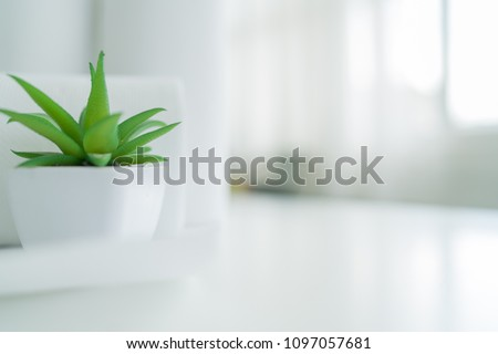 plant decorate with blured cotton towels in background #1097057681
