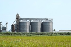 Plant for the drying and storage of grain. Rice plant in the middle of fields.