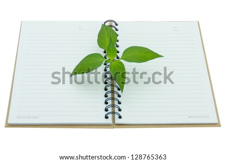 Plant grow from the notebook