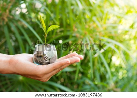 Plant growing from money (coins) in the glass jar held by a man's hands - business and financial metaphor concept,