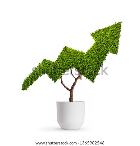 Plant growing in the shape of an arrow isolated on white background