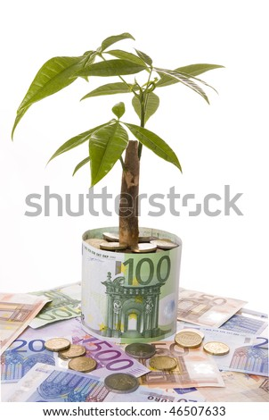 Plant growing on a bank note flowerpot symbolizing financial growth