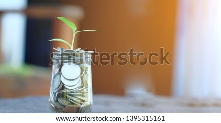 Plant growing over Money coins in jar .Idea for Insurance money savings, retirement planning ,travel and investment ideas, passive income.education plan,401k plan, Financial freedom