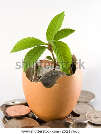 Plant grows out from an egg full with coins. Concept of investment, generating wealth.