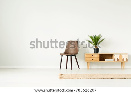 Plant in black pot on wooden cupboard next to brown chair against empty wall in simple living room interior with rug