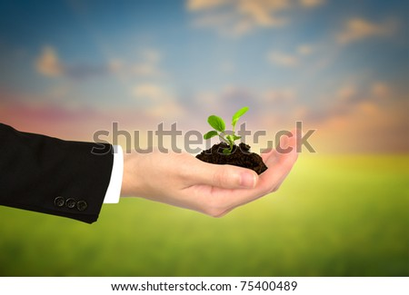 Plant in Business  hand