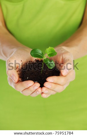 plant in the women hands
