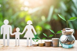 plant money coins saving growth up increase to profit interest for concept investment mutual fund finance and provident fund