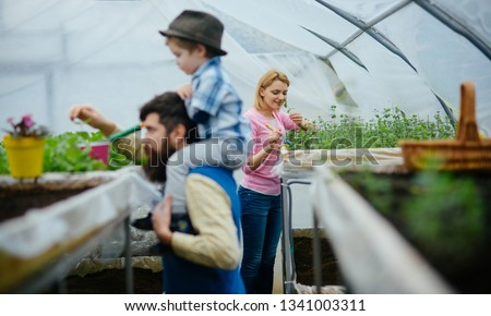 plant nursery. plant nursery with happy family in greenhouse. family do plant nursery. plant nursery concept. family with potted flower