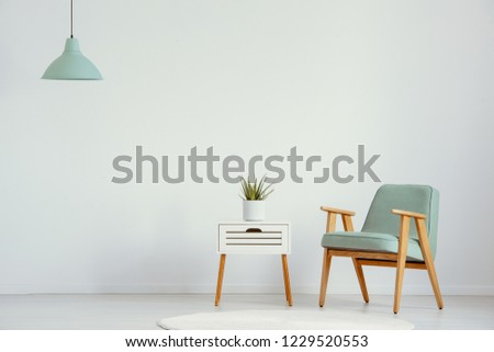 Plant on cabinet next to green wooden armchair in flat interior with lamp and copy space. Real photo #1229520553