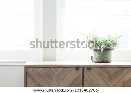 plant on dresser with window light