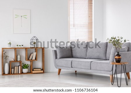 Plant on wooden table next to grey sofa in natural living room interior with poster. Real photo #1106736104