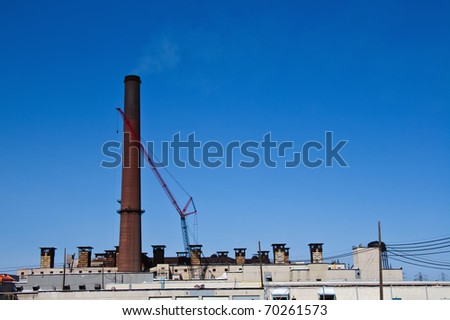 Plant stack with blue sky background