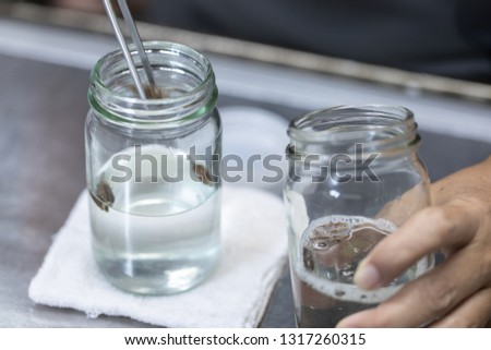 Experiment of plant tissue culture in the laboratory Images