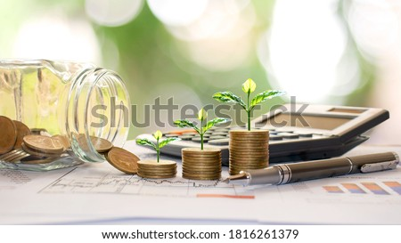 Plant trees on coins and calculators, financial accounting concepts and save money. Stock photo ©