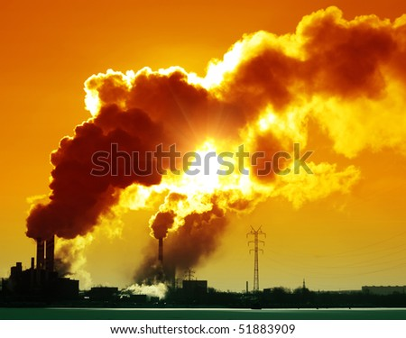 Plant with smoke and blue sky