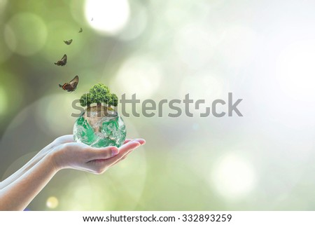 Planting eco green globe arbor tree on female human hand w/ butterfly on blurred natural bokeh background greenery: Saving environment conservation csr concept: Element of the image furnished by NASA