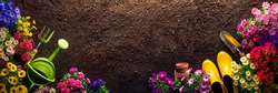 Planting flowers in garden,Horticulture and gardening concept