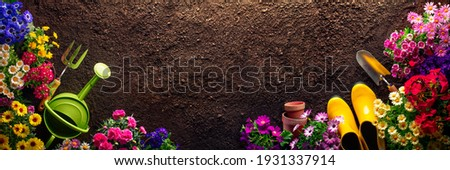 Planting flowers in garden,Horticulture and gardening concept Foto stock ©