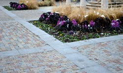 planting perennial flowers on a flowerbed in a city flowerbed on the square. grow grasses and biennials planting without weeds in a regular raster. bloom white, yellow, blue. under a staircase