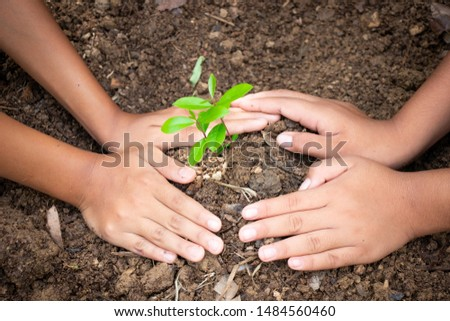 Planting trees, planting hands, planting trees, planting soil, saving earth and reducing global warming. #1484560460