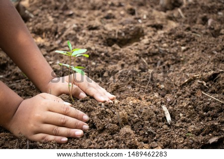 Planting trees, planting hands, planting trees, planting soil, saving earth and reducing global warming. #1489462283