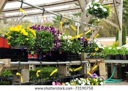 Plants and flowers on display at a garden center