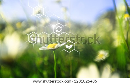 Plants background with biochemistry structure. #1281025486