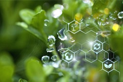 Plants background with biochemistry structure.          - Image