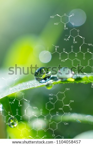 Plants background with biochemistry structure. Morning dew on grass leaf.